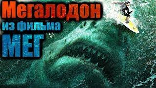 МЕГАЛОДОН из фильма МЕГ: Монстр глубины