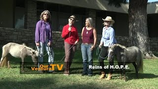 Reins Of Hope and Healing Horses