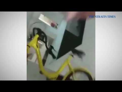 Boy throws ofo bike down from HDB block