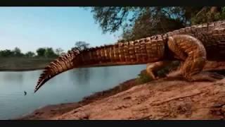 PERU COCODRILO GIGANTE PURUSSAURUS  KNIFE CUCHILLO edit- musicaTITO LA ROSA - CUTERVO Walter Berrios
