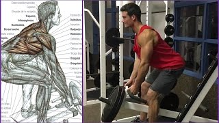 Back Workout  - Connor Murphy | Fitness Body