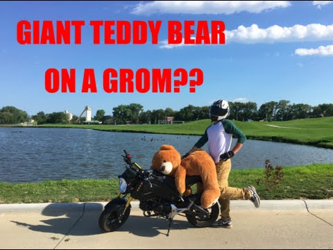 Riding a Honda GROM with a GIANT TEDDY BEAR episode 1 ...
