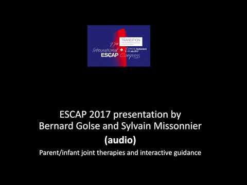 Golse and Missonnier – ESCAP 2017 audio