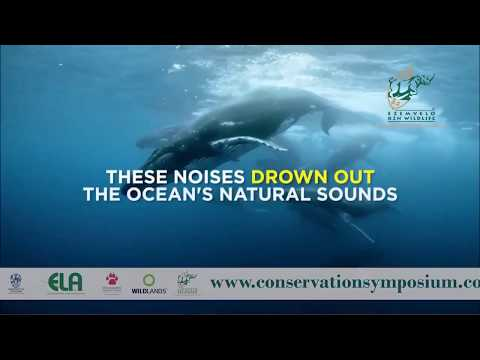 2017D3S16L02 Jennifer Olbers Offshore oil and gas exploration: a threat to KZN marine conservation?