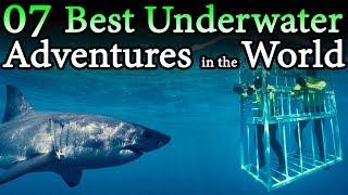 Best Underwater Adventures in the World   Travel Nfx