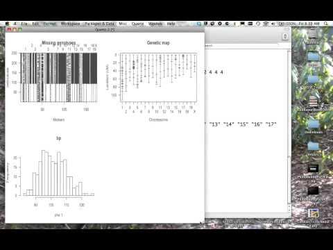 Using R/qtl to analyze QTL data