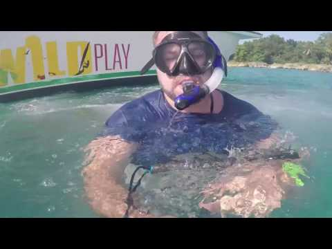 Power Snorkeling | Dominican Republic | Summer '16