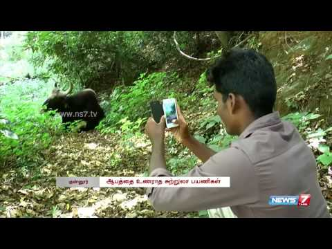 Don't Take Selfie With Animals, Warns Forest Dept. Officials | Tamil Nadu | News7 Tamil |