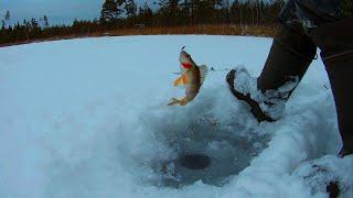 Зимняя рыбалка на озере Кщара