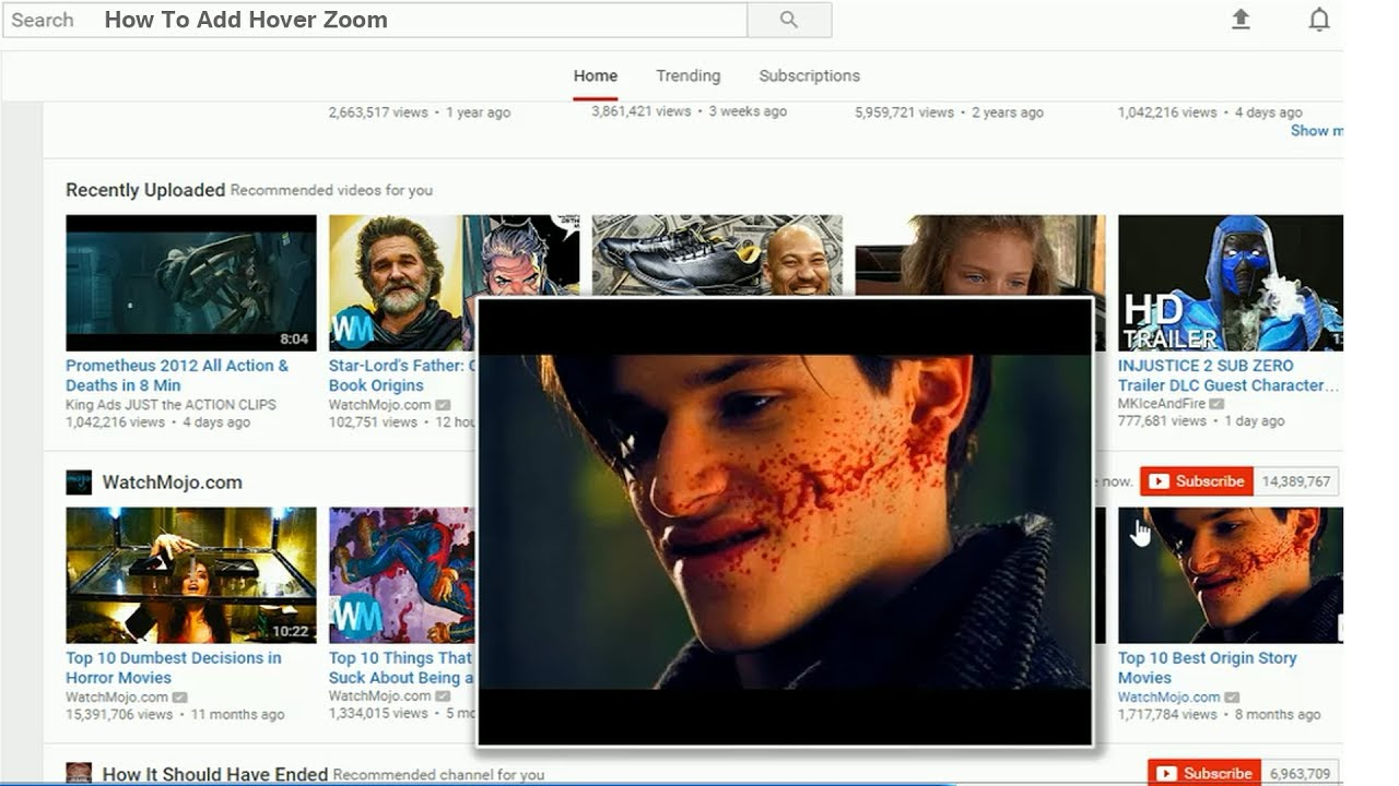 Hover Zoom + How to Add [ Hover Zoom ] Chrome Extension Plug In