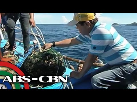 TV Patrol: Buhay sa Gigantes Islands sa Iloilo