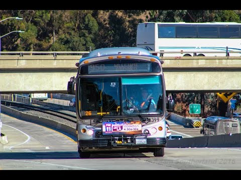 Foothill Transit, LACMTA Silver Line & Metrolink @ Cal State Los Angeles Station