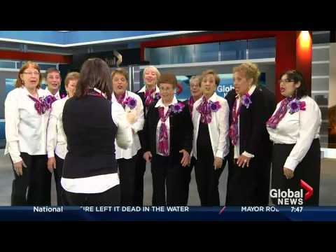 Montreal City Voices on Global Morning News