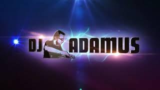 DJ ADAMUS feat. Animal Colective - EMPTY