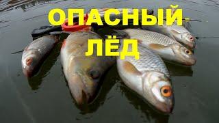 Зимняя рыбалка 2020 НАШЛИ ЛЁД Рыбалка на озере Милятино архив 2020