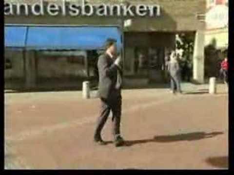 Valet 2006 - Sverigedemokraterna
