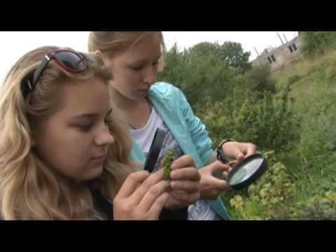 Вопрос: Когда будут возрождать станции юных натуралистов?