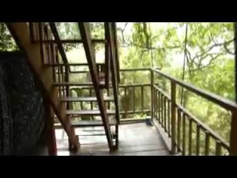 Tree house 1, Gibbon Experience, Laos