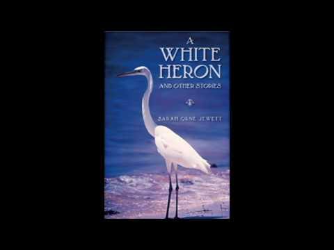 S0341041 - A white heron