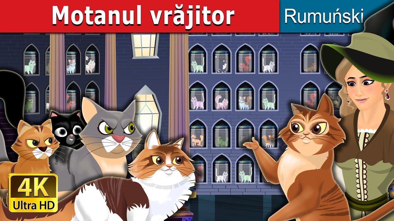 Motanul vrăjitor | Cat Witch in Romanian | Romanian Fairy Tales