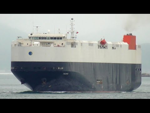 TRIUMPH - Zodiac Maritime vehicles carrier