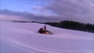 котята ArcticCat PRIDE18 экстрим снегоходы