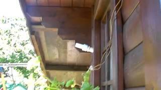 IMPIANTO FOTOVOLTAICO DA 40WATT/144WATT 12VOLT 12 Ah(Ciao a tutti io sono edoardo ed ho 11 anni e con questo video vi voglio mostrare il mio piccolo impiantino fotovoltaico da 40watt il pannello 144wattorari 12volt ..., 2011-09-06T23:38:15.000Z)