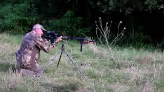 277 wolverine Gel Test and Boar Hunt