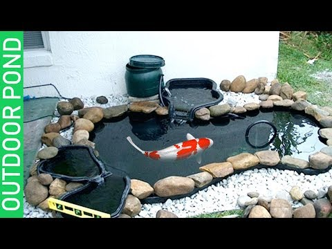 OUTDOOR POND¬HOW I MAINTAIN THE HEALTH OF MY BREEDER KOI