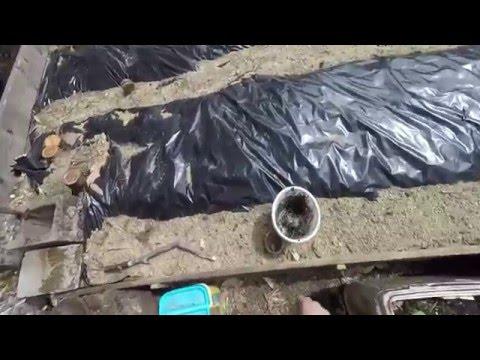 Making Fish Hydrolysate
