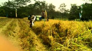 Indo Combine Harvester