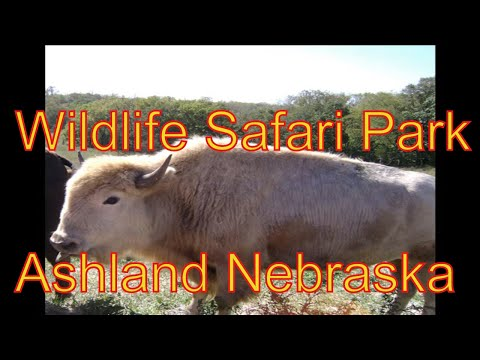 Henry Doorly Zoo Omaha Nebraska Wildlife Safari Park Ashland