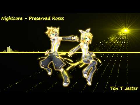 Nightcore - Preserved Roses