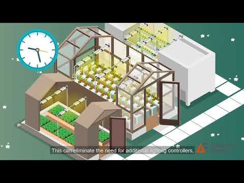 Horticultural Lighting Power Solutions