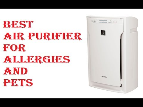 Best Air Purifier For Allergies And Pets 2018