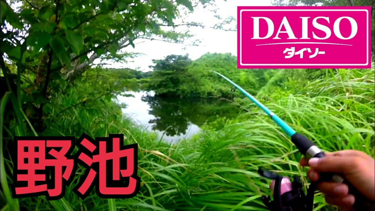 ダイソーの釣り竿とリールでバス釣り! - YouTube
