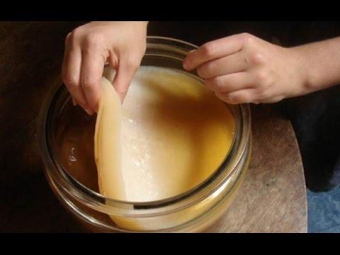 Te de hongo chino para adelgazar