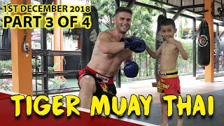 TIGER MUAY THAI BEGINNER (PRIVATE CLASS) (PART 3 OF 4) - DAY IN THE LIFE SERIES