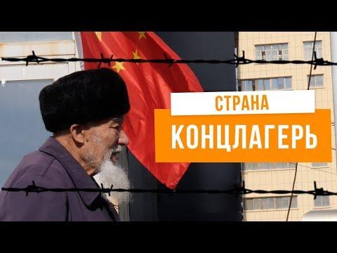 Смотреть Город-тюрьма для мусульман в Китае | Уйгуры в Урумчи, Синцзян онлайн
