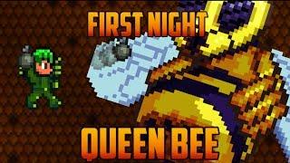 Terraria - Queen Bee first Night [Speedrun Challenge]