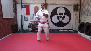 Little About Kihon : Shinshinkan Karate Do : Shihan Andres Diaz