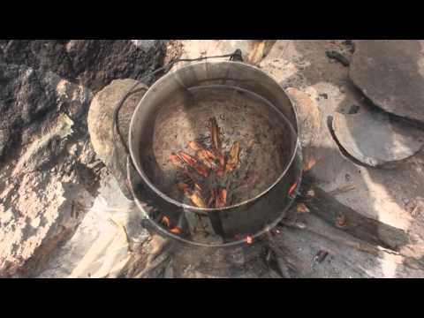 Bugs for Life - Cooking Grasshoppers in Kosso Village, North Benin