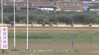 Бега-заезд для лошадей 4 лет-Емельяново 15.08.2015(Horse–Animal-racing-конь-смотреть-онлайн-скачки)