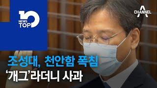 조성대, 천안함 폭침 '개그'라더니 사과