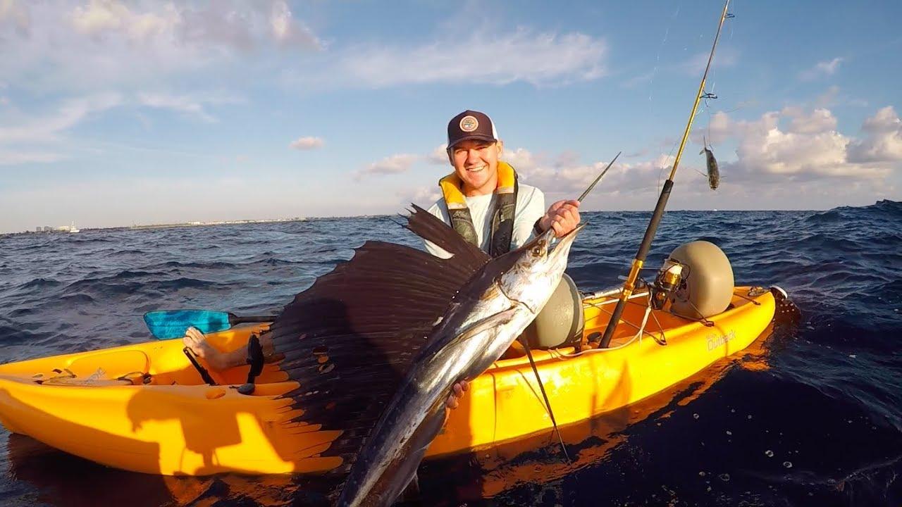 Winter time sailfish in south florida deep blue kayak for Deep blue kayak fishing