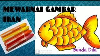 Mewarnai Gambar Ikan Sederhana Youtube
