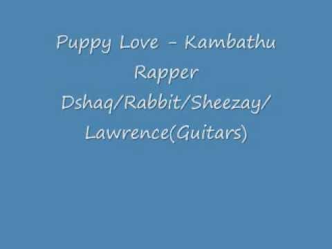 Puppy Love Sheezay