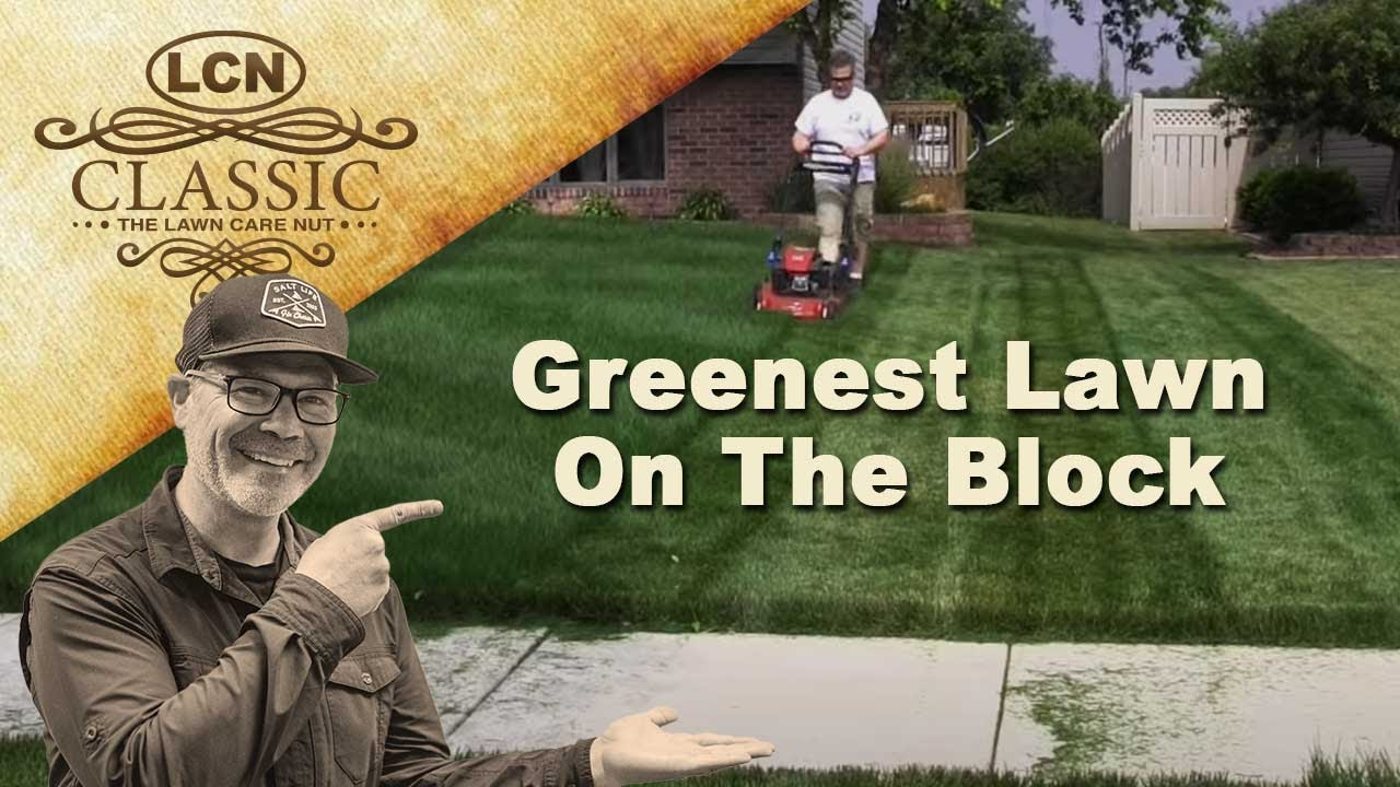 Secret To Having The Greenest Lawn On The Block Youtube