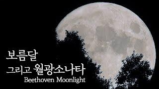 보름달의 생동감을 진하게 느낄 수 있는 영상   Beethoven_Piano Sonata No.14 Moonlight
