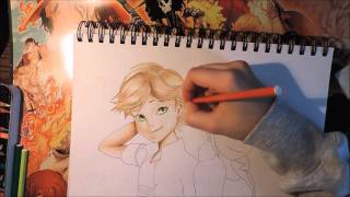 Miraculous ladybug-- Adrien x Marinette speed color Drawing